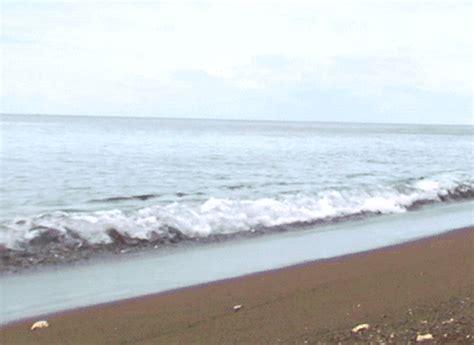 immagini  gif animate  spiagge gifmania