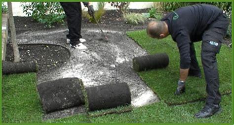 guide de pose du gazon en rouleau jardinerie truffaut conseils gazon de placage truffaut