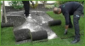 Prix Du Gazon : guide de pose du gazon en rouleau jardinerie truffaut ~ Premium-room.com Idées de Décoration