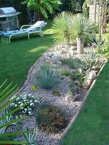 Steinbeet Pflanzen Winterhart : bildergalerie enige pics aus meinem schrebergarten ~ Watch28wear.com Haus und Dekorationen