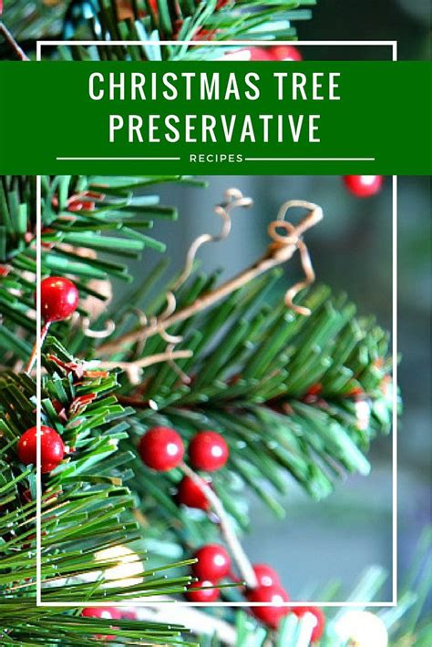 mythbusters christmas tree preservative diy tree preservatives from the pantry
