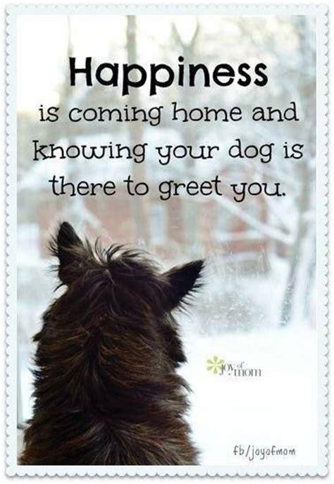 dog quotes sad ideas  pinterest puppy quotes