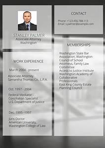 Modelo De Curr U00edculo De Representante Legal E Advogado