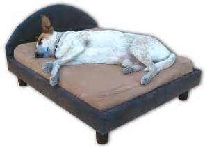 Tempurpedic Dog Bed by Orthopedic Memory Foam Dog Beds Dog Furniture