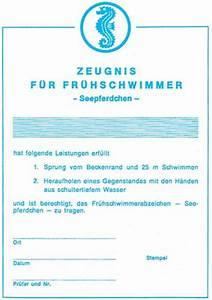 Kinderschwimmkurs DLRG Ortsgruppe Sipplingen