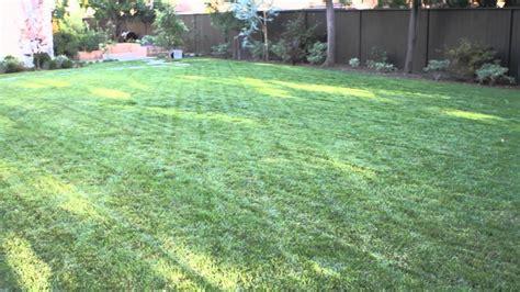 landscape  big backyard landscaping garden