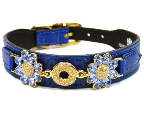 Daisy Diamonds Luxury Leather Dog Collars