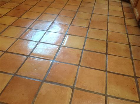 Antique Saltillo Floor Cleaning & Refinishing in Santa Cruz Ca