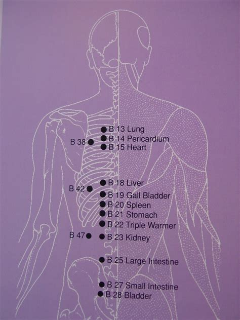 Massage Gun For Neck Pain