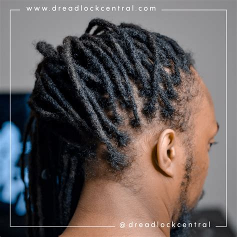afro dreads crocheted  repaired  dreadlockcentralcom