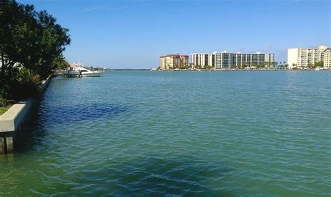 Fishing Boat Rentals Clearwater Fl by 17 Best Images About Clearwater Marina And Harbor On