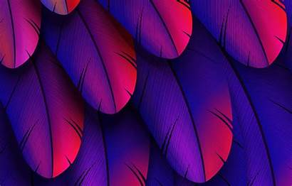 Feather Colorful 3d Abstract Telegram вконтакте