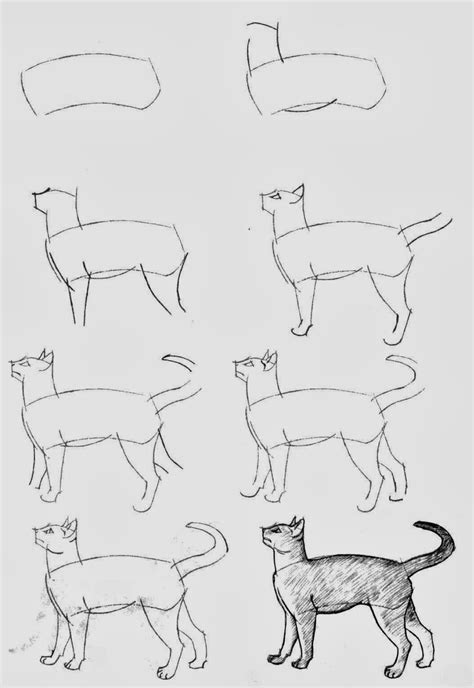 draw cats diy craft projects