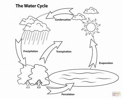Cycle Water Printable Coloring Pages Diagram Simple