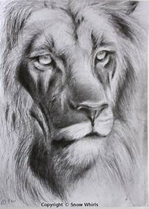 Lion face sketch by SnowWhirls on DeviantArt
