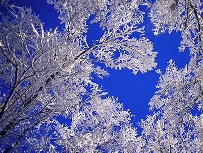 Winter Desktop Scenes Wallpapers