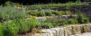 Böschung Bepflanzen Fotos : b schungen bepflanzen b schungen bepflanzen pinterest ~ Orissabook.com Haus und Dekorationen