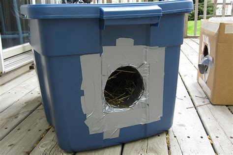 Face Low-cost Spay/neuter Clinicoutdoor Cat Shelters Diy Winter Wonderland Decorations Cd Sleeves Valentine Gifts For Him Lush Soap Storage Box Dog Leash Paper Countertops Easter Ideas