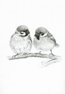 Bird Sparrow ORIGINAL Charcoal Drawing Hand Drawn ...