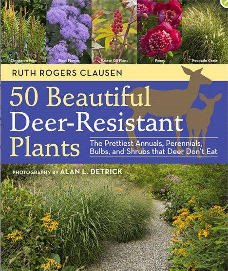 best 25 deer resistant garden ideas on deer