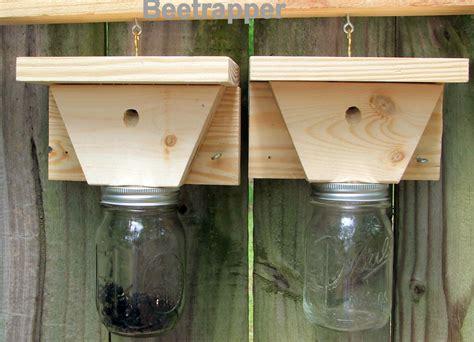 carpenter bee traps bee  pest control