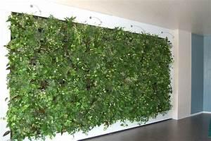 Pflanzen An Der Wand : kinnula hydrokulturen ~ Markanthonyermac.com Haus und Dekorationen