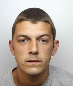 25 year old rotherham man receives 12 year sentence for for Ricky lee s dog houses