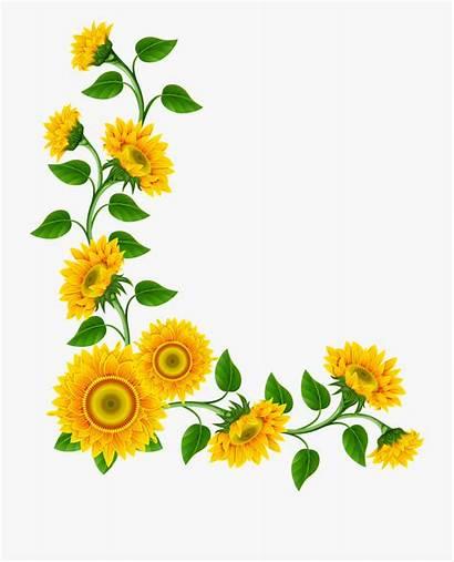 Sunflower Clipart Background Border Daisy Transparent Clip