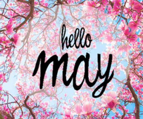May Images 80 Hello May Quotes Sayings