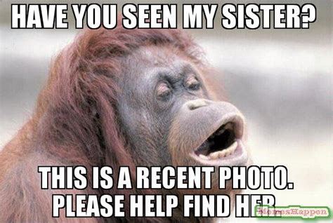 Funny Sister Memes - 20 totally funny sister memes we can all relate to sayingimages com
