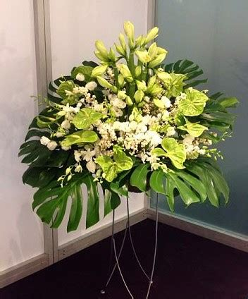 blumen abo vanda deko und floristik