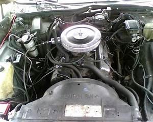 1987 Chevrolet Caprice - Pictures