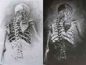 Skeletal by GatoDelCielo on DeviantArt