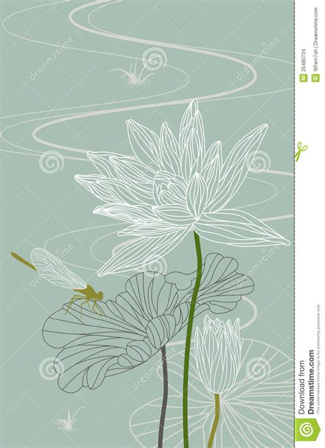lotus waterlily dragonfly vector illustration stock