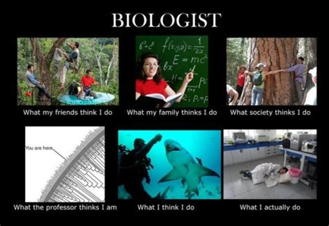 Meme Biology - biology major meme tumblr image memes at relatably com