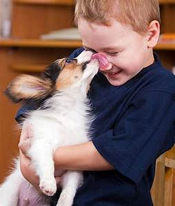 13 Ways Your Dog Shows Love | Canine Companions
