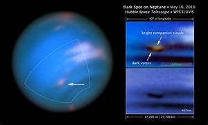 Hubble spots a new long-lived storm raging on Neptune ...