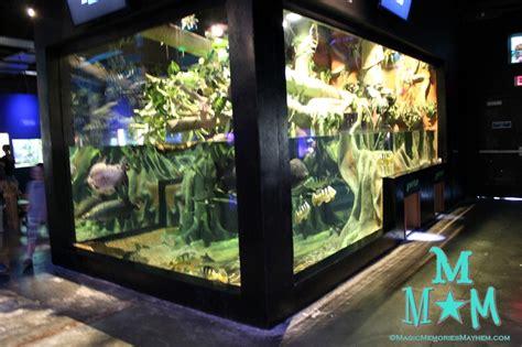 cool fish tanks amazon  Amazoncom Fish Bowl Aquaglobez
