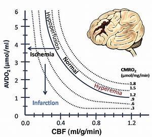 Graph Demonstrating Relationships Among Cbf  Cerebral