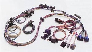 Tbi Fuel Injection Wiring Harness