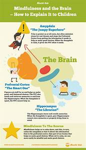 Mindfulness And The Brain U2014how To Explain It To Children