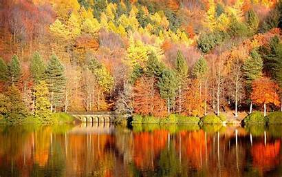 Fall Foliage Backgrounds Wallpapers Autumn Background Pixelstalk