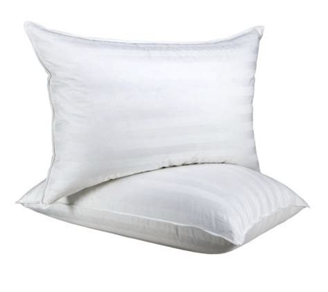 northern nights pillows northern nights s 2 500tc egy cotton 550fp goose