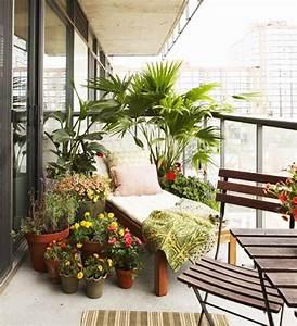 Pflanzen Für Balkon : sichtschutz f r den balkon pflanzen umgeben sonnenliege garten pinterest balkon pflanzen ~ Sanjose-hotels-ca.com Haus und Dekorationen