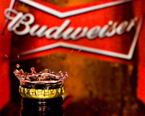 wallpaper  budweiser wallpaper budweiser    king  beers