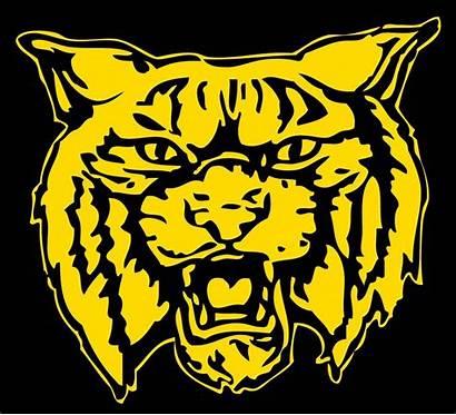 Dillon Sports Wildcat Sc District Schools Four