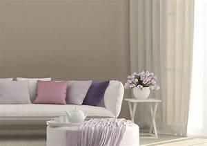 peinture salon quelle peinture choisir pour son salon With choix de couleur de peinture pour salon