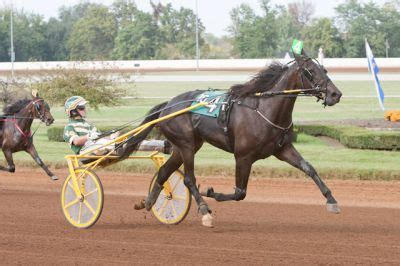 Lifetime Pursuit Is Best; Gingras Wins Three In Ky