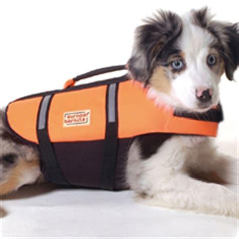 schwimmwesten fuer hunde hundeweltat