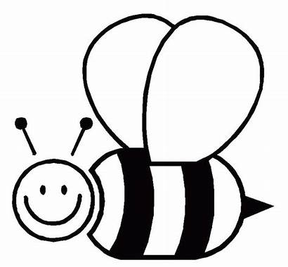 Bee Bumble Outline Template Clipart Coloring Templates